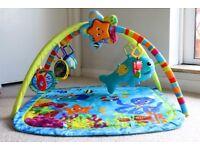 Baby Jungle Gym / Play Gym