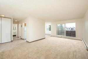 *INCENTIVES* 2 Bd Suite in Family Bldg by Northgate Mall-193