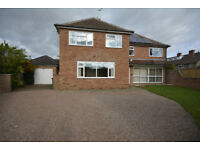 6 lovely rooms available in a fabulous detached house