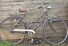 BSA Collegiate push bike