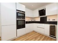 ** LUXURY 1 BED APARTMENT UNFURNISHED, GYM SPA, ALDGATE EAST, LIVERPOOL STREET, E1 - CALL NOW!! - AW