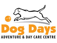 Full time Driver/Dog Day Care Assistant