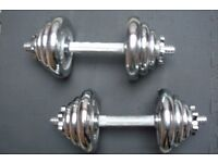 weight dumbellbar x 2, discs and spinlock x2