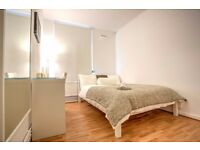 Excellent double room in fantastic newly refurbished flat in Borough!