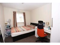 South East London flat - Cheap double room!