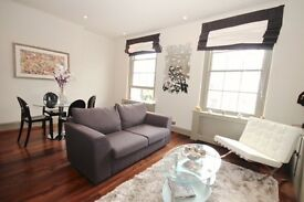 SHORT TERM - AMAZING 1 BEDROOM IN SOUTH KENSINGTON