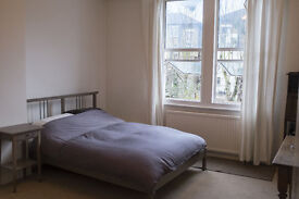 Beautiful Large quiet double room available immediately!