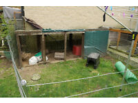 Rabbit/chicken shelter. Free for collection. will need van and a couple of strong people.