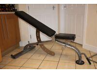 Jordan Fitness weights bench / gym bench / utility / dumbbells / dumbells - Watson Gym, Life Fitness