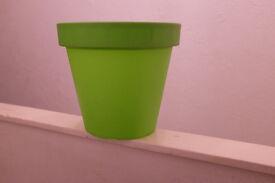 urgent sale - 2 green planting pot for sale