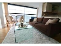 NEW Two bedroom Furnished Luxury Apartment near Oxford Street ! !