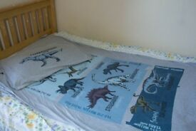 Boys duvet quilt cover and matching pillow case Dinosaur fun educational, very comfy good material