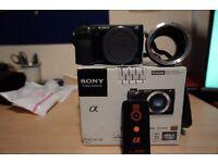 Sony Compact Camera- Sony NEX6