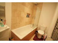 two double bedroom garden flat in balham, renovated throughout! october