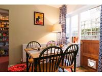 Beautiful 2 bed garden flat in Oval with 2 sweet cats short term from mid April - no deposit