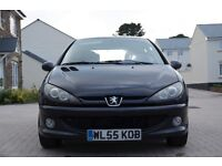 Peugeot 206 sport (superficial damage to driver rear door) MOT & service history