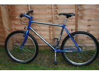 """Raleigh titanium mountain bike bicycle size 19"""""""