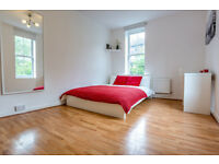 Extra- large double room in Borough! Book your viewing NOW