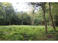 Plots A&B Land at Church Lane , Warlingham , Surrey , CR6 9PG