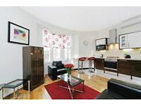 BRIGHT AND LOVELY ONE BED FLAT NEAR OXFORD STREET**GREAT PLACE GOOD PRICE