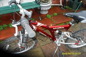 apollo scrambler childs bicycle lovely conditrion ages 8 to 12