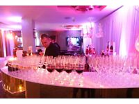 Event Photographer / Corporate Events -Parties - Weddings/