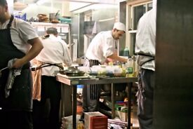 Trainee/ Commis / Apprentice Chef