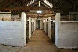 DIY liveries near Coltishall (8 miles NE Nch)- Horse / stables / livery /grazing / light and water