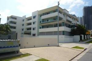 Luxury Apartments Southport Gold Coast City Preview