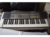 HOHNER P 120N KEYBOARD WITH CARRY CASE HOHNER AMP WIRES/CAN SEE WORKING