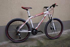 Focus Black Raider Black White Red Raider Mountain Bike Bicycles