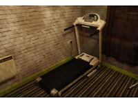 Everlast treadmill with auto incline. Running, walking exercise