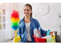Excellent part-time cleaner for nice couple in Golders Green
