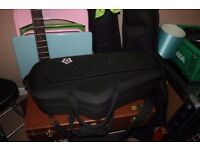Padded case for alto saxophone