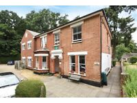 Beautiful 1 bed apartment in a Victorian house near Woking train station