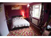 Council Exchange my 1 bedroom in Brighton, for yours in Guildford / Woking / Alton areas