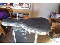Hard shell guitar case