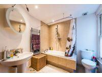 Large one bedroom flat set Portnall road w9
