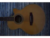 Acoustic guitar (Congress) with soft case and TGI capo