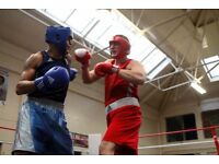 PERSONAL TRAINER -QUALIFIED GB BOXING COACH -GROUPS & ONE TO ONE BOXING SESSIONS £40
