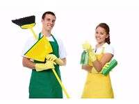 Domestic Cleaner Wanted FULL TIME!