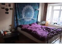 Double room in house share for summertime