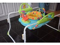 Fisher-Price Step and Play Jumperoo