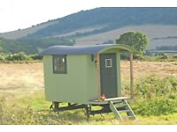 Hand-Crafted Traditional Shepherd Hut