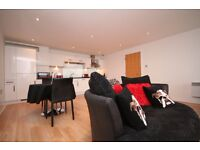 1 Bed Executive Furnished Apartment, Stobcross St with Parking