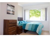 Lovely En-suite room available