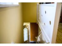 Professional painter, decorator & plumber available now