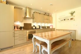 BEAUTIFUL 2 BED 2 BATH APARTMENT ¦ HUGE LOUNGE ¦ HACKNEY E9 ¦ PVT TERRACE