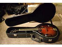Gremlin Electro Acoustic Mandolin w/ Hard Case
