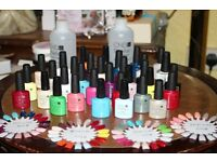 Collection of Bottles of CND Shellac ( new )